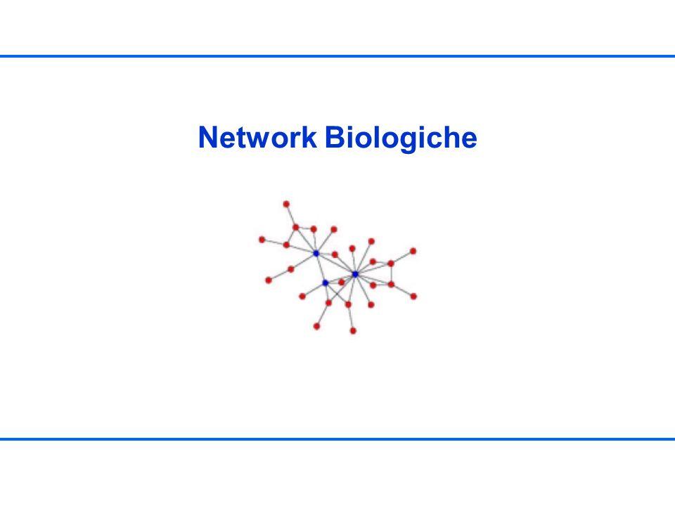 Indice Esempi di network biologiche –Network di interazione proteina proteina (PPI networks) –Network metaboliche –Pathway Caratterizzazione delle network (grafi) –Grafi random –Network scale-free –Network gerarchici Esempi di topologie scale-free e gerarchiche Rilevamento della struttura modulare –Algoritmi tradizionali Misure di distanza Single linkage clustering Average linkage clustering –Algoritmi basati su betweenness centrality (Girvan, Newman) –Applicazioni su network sociologiche, metaboliche e biochimiche