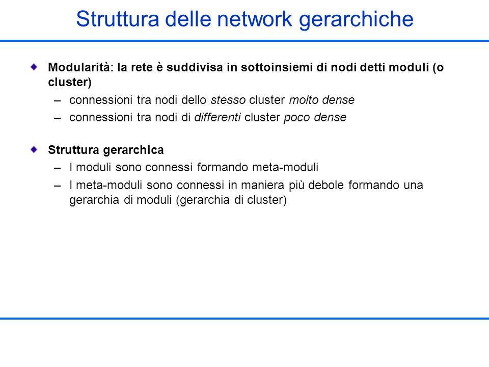 Struttura delle network gerarchiche Modularità: la rete è suddivisa in sottoinsiemi di nodi detti moduli (o cluster) –connessioni tra nodi dello stess