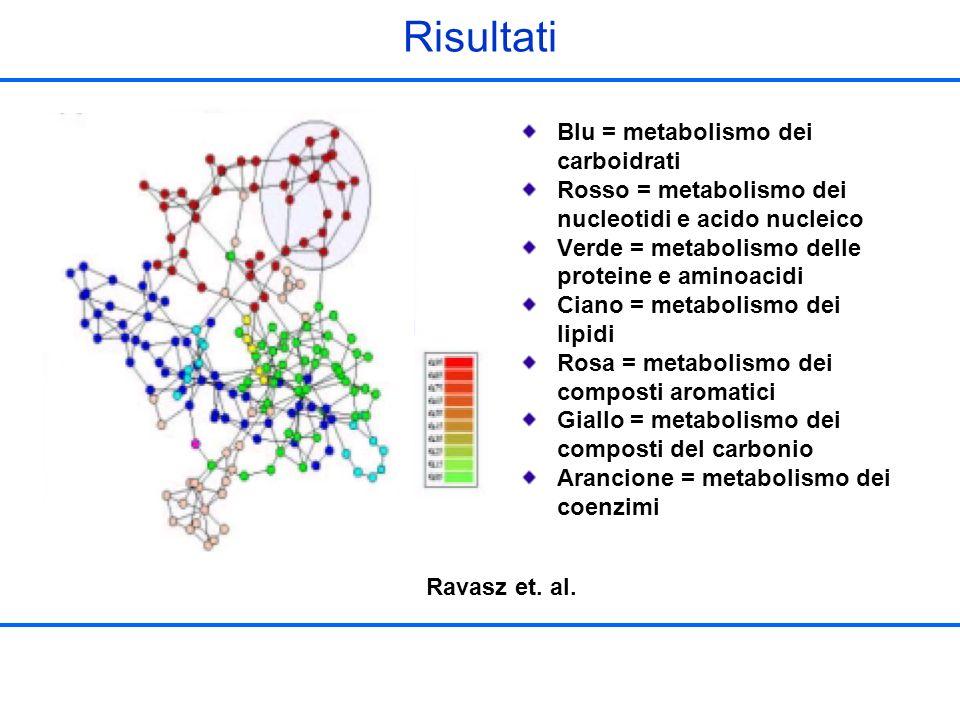 Risultati Ravasz et. al. Blu = metabolismo dei carboidrati Rosso = metabolismo dei nucleotidi e acido nucleico Verde = metabolismo delle proteine e am