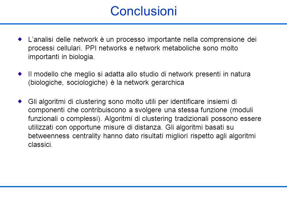 Conclusioni Lanalisi delle network è un processo importante nella comprensione dei processi cellulari. PPI networks e network metaboliche sono molto i
