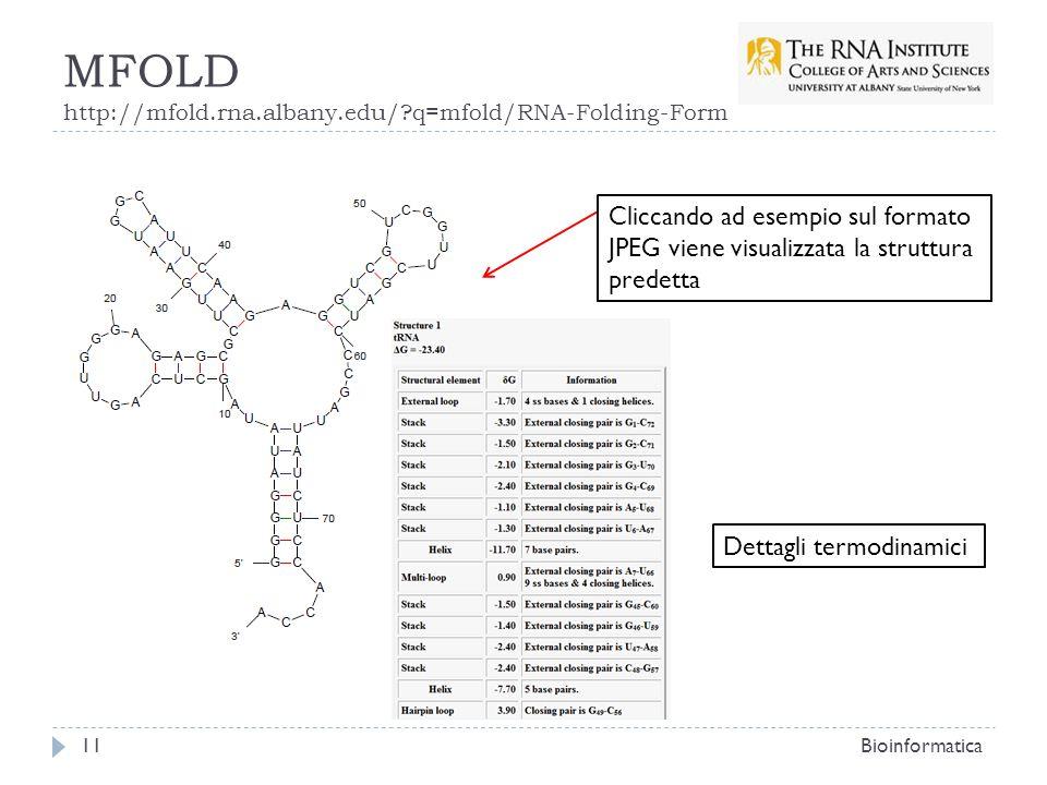 MFOLD http://mfold.rna.albany.edu/?q=mfold/RNA-Folding-Form Bioinformatica11 Cliccando ad esempio sul formato JPEG viene visualizzata la struttura pre