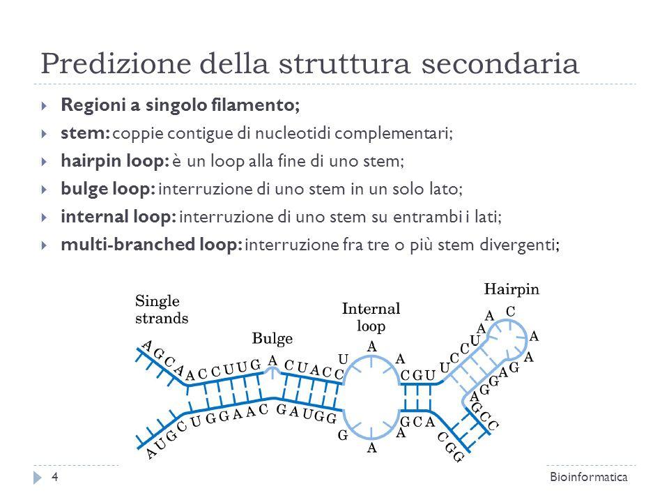 Predizione della struttura secondaria Regioni a singolo filamento; stem: coppie contigue di nucleotidi complementari; hairpin loop: è un loop alla fin