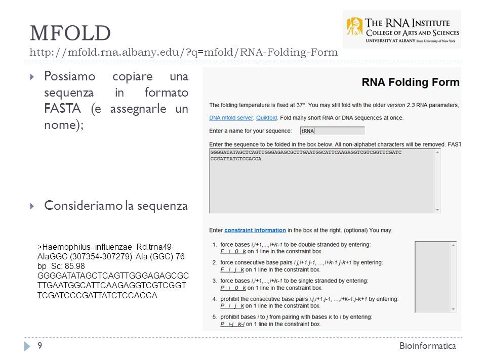 MFOLD http://mfold.rna.albany.edu/?q=mfold/RNA-Folding-Form Bioinformatica9 Possiamo copiare una sequenza in formato FASTA (e assegnarle un nome); Con