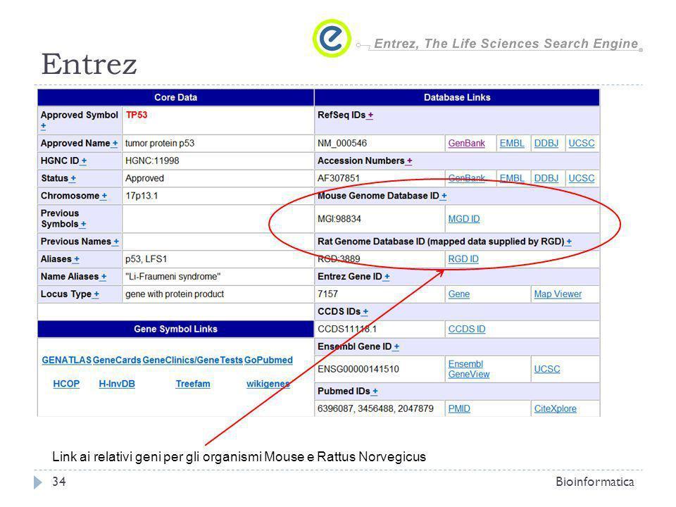 Entrez Bioinformatica34 Link ai relativi geni per gli organismi Mouse e Rattus Norvegicus