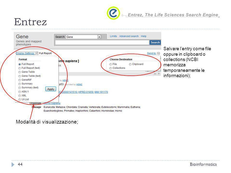 Entrez Bioinformatica44 Modalità di visualizzazione; Salvare lentry come file oppure in clipboard o collections (NCBI memorizza temporaneamente le inf