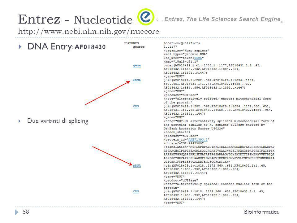 DNA Entry : AF018430 Due varianti di splicing Bioinformatica58 Entrez - Nucleotide http://www.ncbi.nlm.nih.gov/nuccore