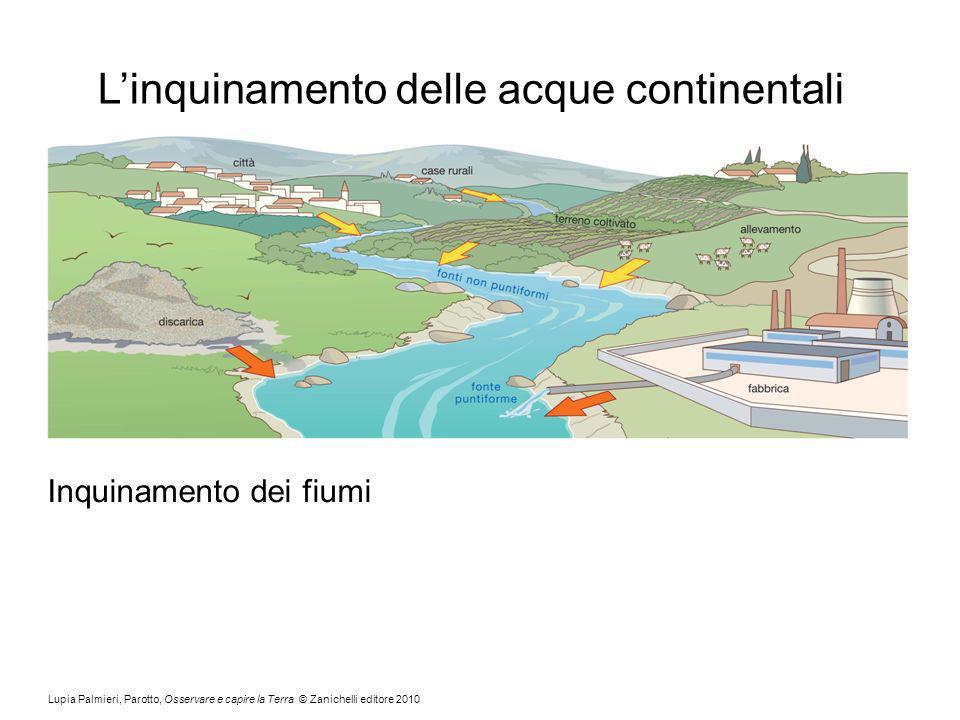 Lupia Palmieri, Parotto, Osservare e capire la Terra © Zanichelli editore 2010 Linquinamento delle acque continentali Inquinamento dei fiumi