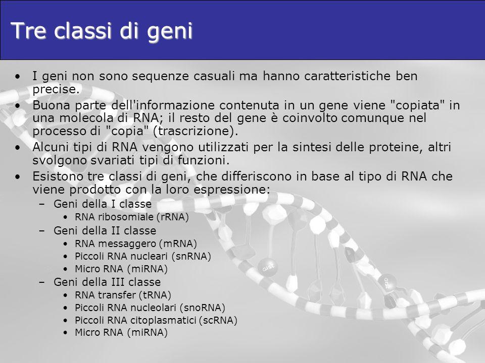 I geni non sono sequenze casuali ma hanno caratteristiche ben precise. Buona parte dell'informazione contenuta in un gene viene