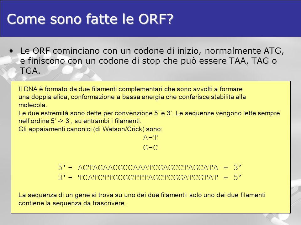Come sono fatte le ORF? Le ORF cominciano con un codone di inizio, normalmente ATG, e finiscono con un codone di stop che può essere TAA, TAG o TGA. I