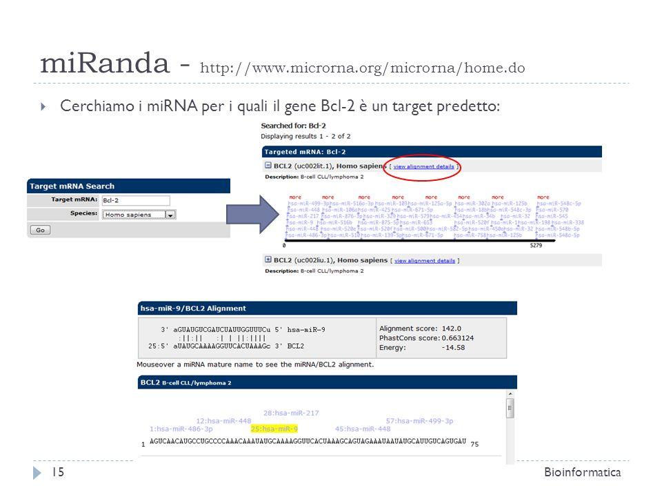 Cerchiamo i miRNA per i quali il gene Bcl-2 è un target predetto: 15Bioinformatica miRanda - http://www.microrna.org/microrna/home.do
