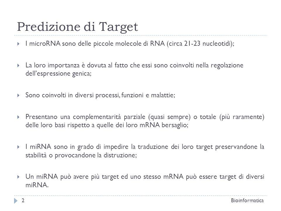 Predizione di Target I microRNA sono delle piccole molecole di RNA (circa 21-23 nucleotidi); La loro importanza è dovuta al fatto che essi sono coinvo
