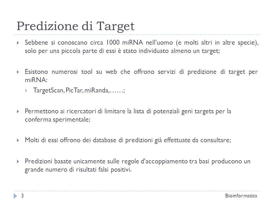 Predizione di Target Sebbene si conoscano circa 1000 miRNA nelluomo (e molti altri in altre specie), solo per una piccola parte di essi è stato indivi