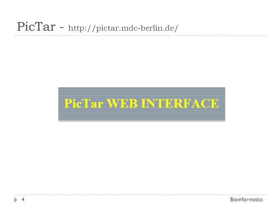PicTar - http://pictar.mdc-berlin.de/ Bioinformatica4