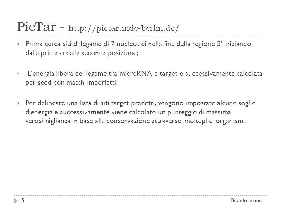 PicTar - http://pictar.mdc-berlin.de/ Prima cerca siti di legame di 7 nucleotidi nella fine della regione 5' iniziando dalla prima o dalla seconda pos