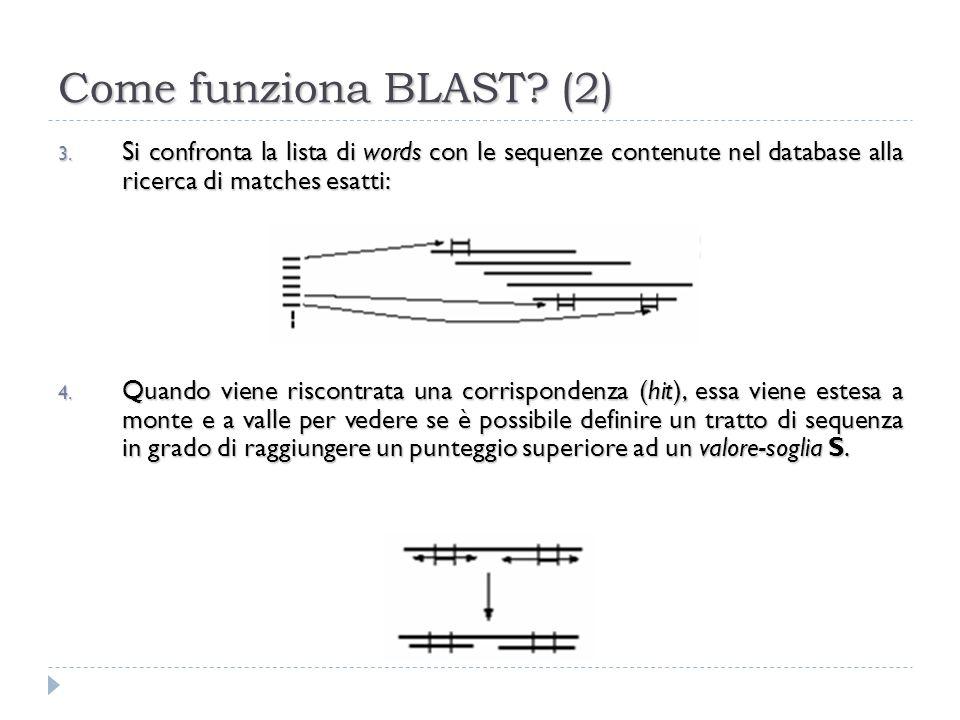 Come funziona BLAST? (2) 3. Si confronta la lista di words con le sequenze contenute nel database alla ricerca di matches esatti: 4. Quando viene risc