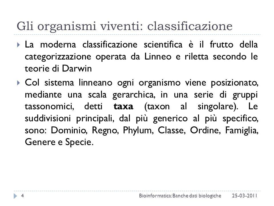 Gli organismi viventi: classificazione La moderna classificazione scientifica è il frutto della categorizzazione operata da Linneo e riletta secondo l