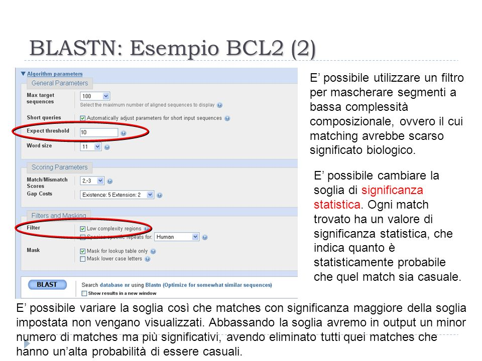 BLASTN: Esempio BCL2 (2) E possibile utilizzare un filtro per mascherare segmenti a bassa complessità composizionale, ovvero il cui matching avrebbe s