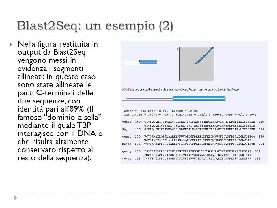 Blast2Seq: un esempio (2) Nella figura restituita in output da Blast2Seq vengono messi in evidenza i segmenti allineati: in questo caso sono state all