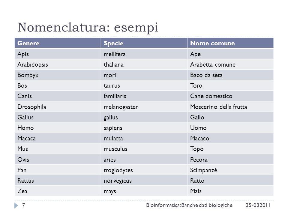 Nomenclatura: esempi 25-0320117Bioinformatica: Banche dati biologiche GenereSpecieNome comune ApismelliferaApe ArabidopsisthalianaArabetta comune Bomb