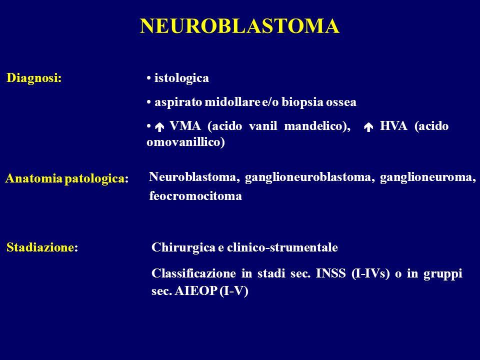 istologica aspirato midollare e/o biopsia ossea VMA (acido vanil mandelico), HVA (acido omovanillico) Diagnosi: Neuroblastoma, ganglioneuroblastoma, g
