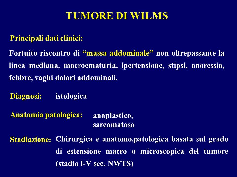 TUMORE DI WILMS Fortuito riscontro di massa addominale non oltrepassante la linea mediana, macroematuria, ipertensione, stipsi, anoressia, febbre, vag