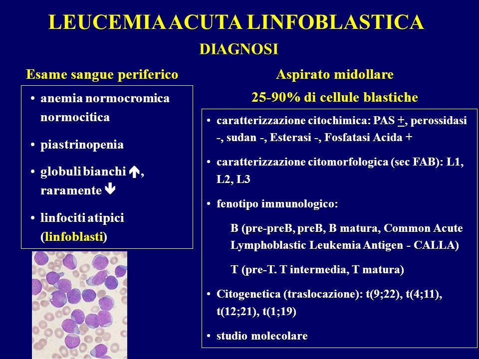 LEUCEMIA ACUTA LINFOBLASTICA Esame sangue periferico DIAGNOSI anemia normocromica normocitica piastrinopenia globuli bianchi, raramente linfociti atip