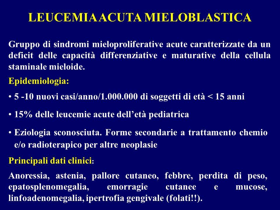 LEUCEMIA ACUTA MIELOBLASTICA Gruppo di sindromi mieloproliferative acute caratterizzate da un deficit delle capacità differenziative e maturative dell