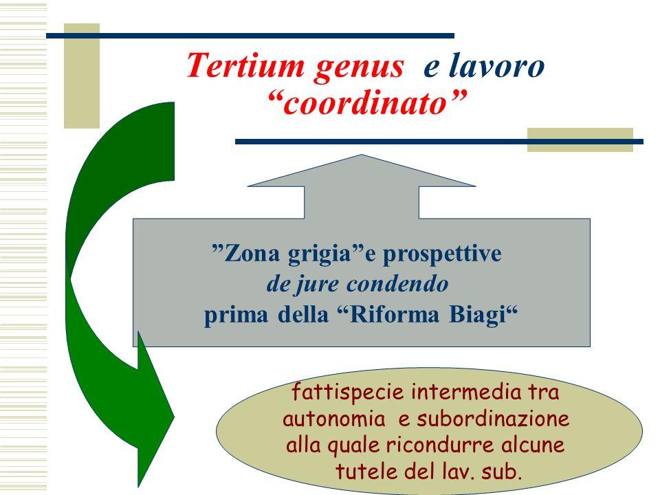 Tertium genus e lavoro coordinato Zona grigiae prospettive de jure condendo prima della Riforma Biagi fattispecie intermedia tra autonomia e subordina