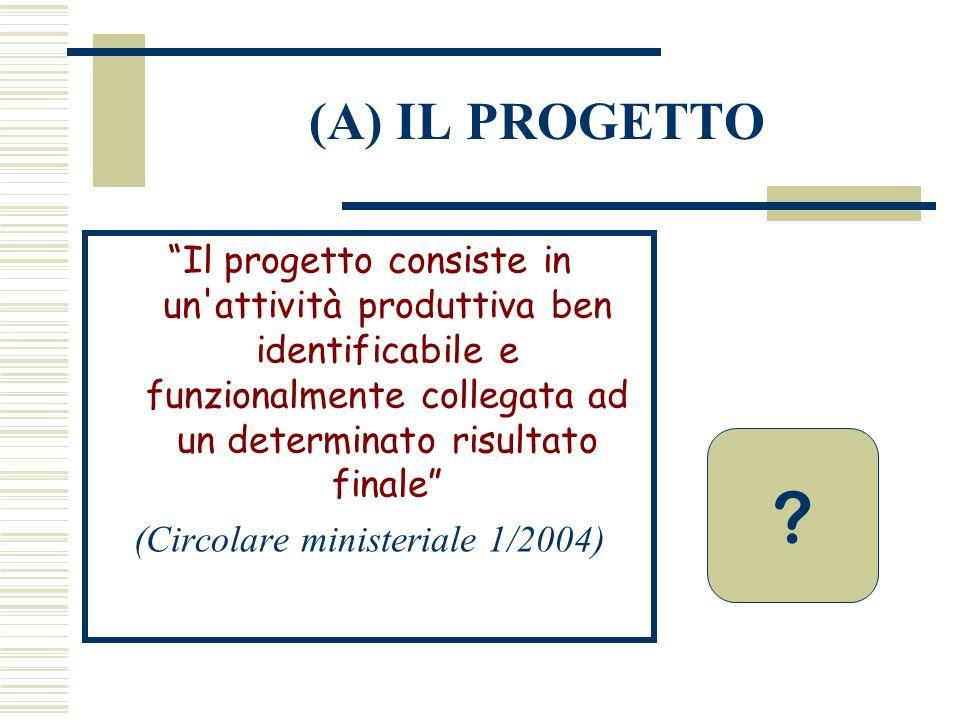 (A) IL PROGETTO Il progetto consiste in un'attività produttiva ben identificabile e funzionalmente collegata ad un determinato risultato finale (Circo