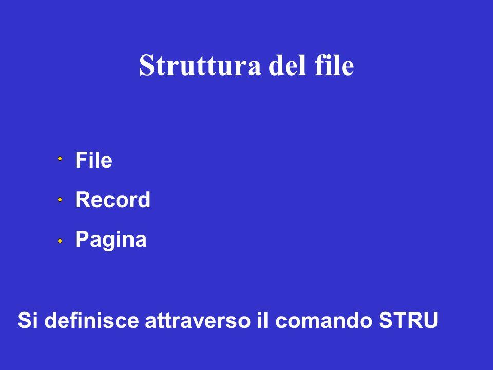 Struttura del file File Record Pagina Si definisce attraverso il comando STRU