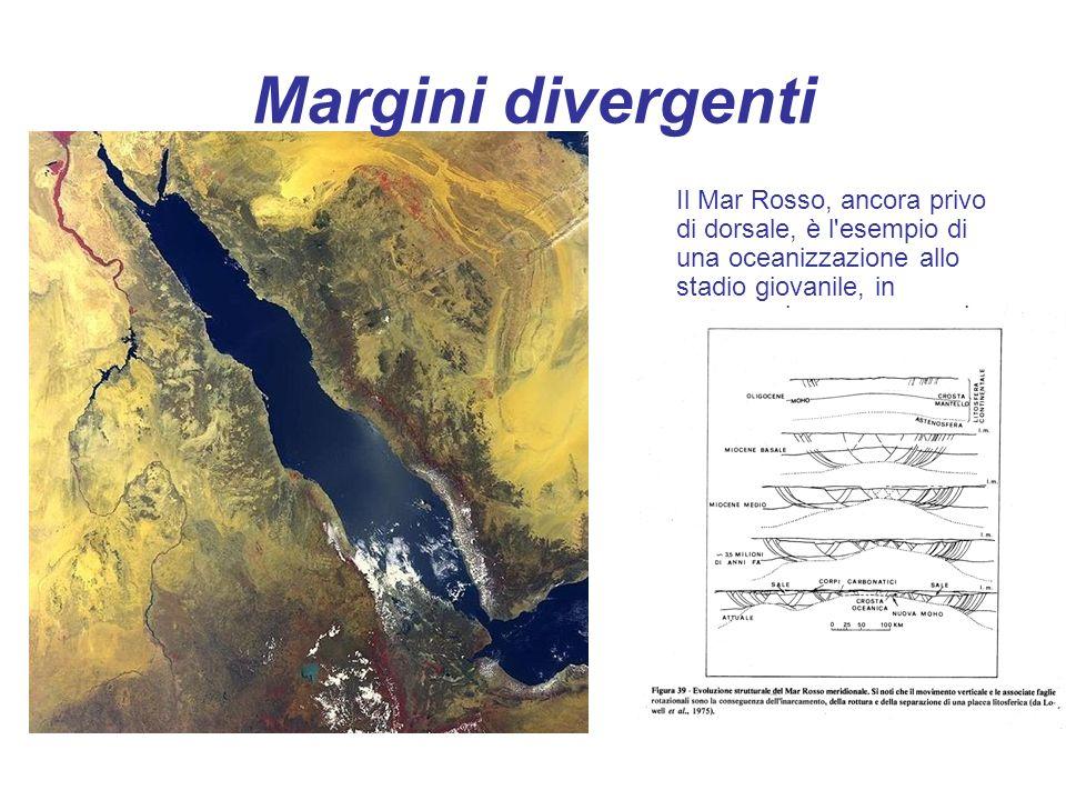 Il Mar Rosso, ancora privo di dorsale, è l'esempio di una oceanizzazione allo stadio giovanile, in propagazione verso nord. Margini divergenti