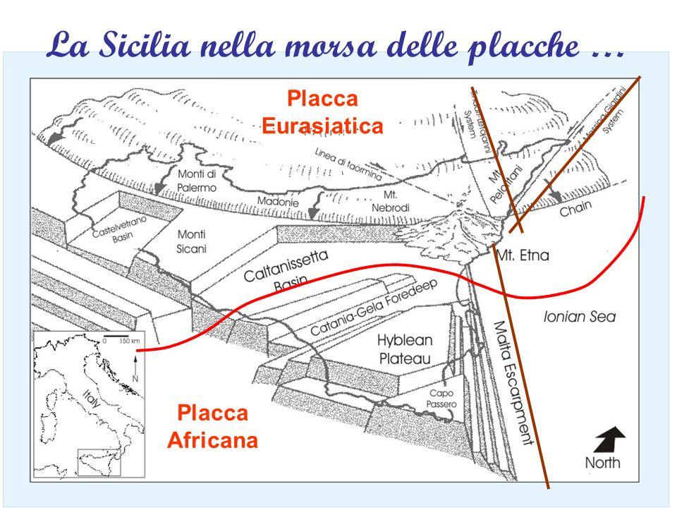 Placca Eurasiatica Placca Africana La Sicilia nella morsa delle placche …