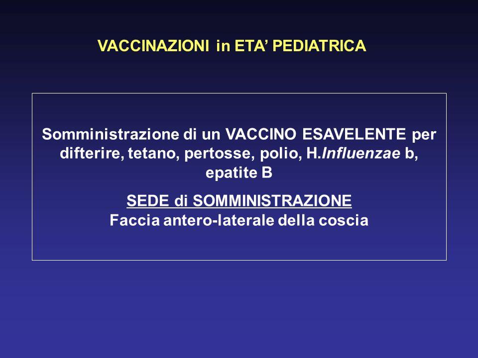 VACCINAZIONI in ETA PEDIATRICA Somministrazione di un VACCINO ESAVELENTE per difterire, tetano, pertosse, polio, H.Influenzae b, epatite B SEDE di SOMMINISTRAZIONE Faccia antero-laterale della coscia