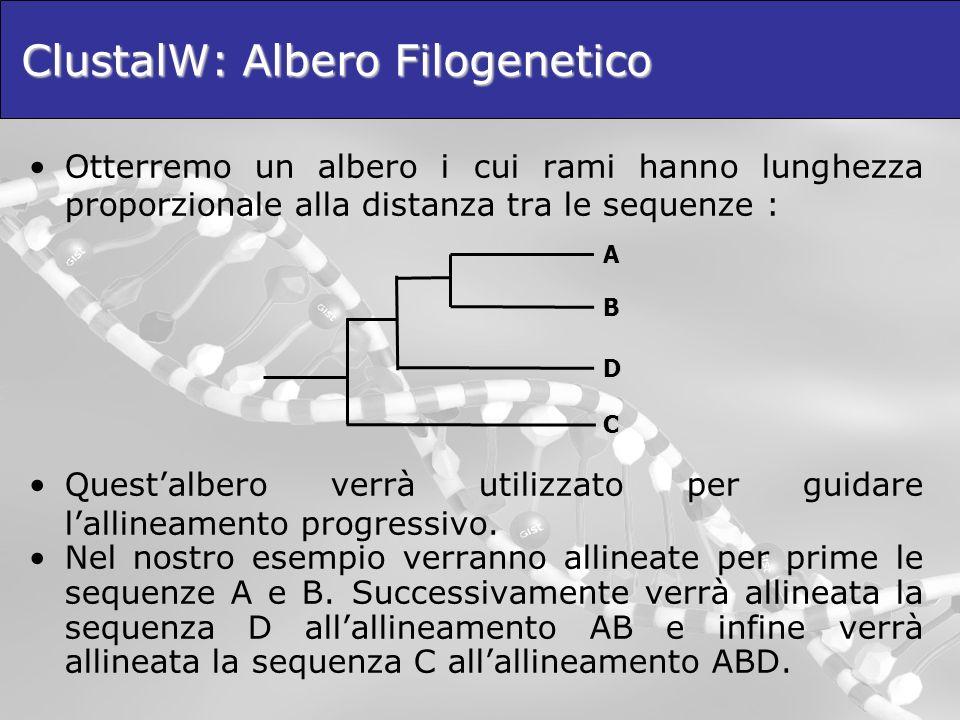 ClustalW: Albero Filogenetico Otterremo un albero i cui rami hanno lunghezza proporzionale alla distanza tra le sequenze : Questalbero verrà utilizzat