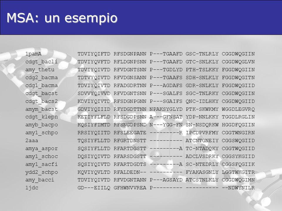 MSA: un esempio 1pamA TDVIYQIFTD RFSDGNPANN P---TGAAFD GSC-TNLRLY CGGDWQGIIN cdgt_bacli TDVIYQVFTD RFLDGNPSNN P---TGAAFD GTC-SNLKLY CGGDWQGLVN amy_the