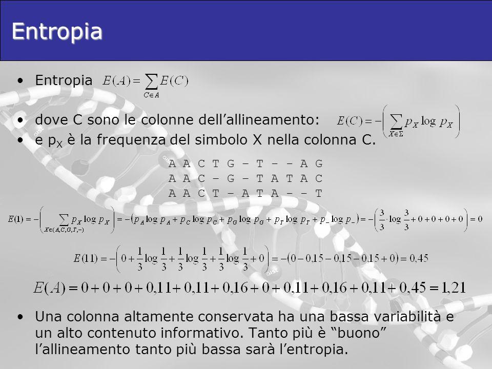 Entropia Entropia dove C sono le colonne dellallineamento: e p X è la frequenza del simbolo X nella colonna C. Una colonna altamente conservata ha una