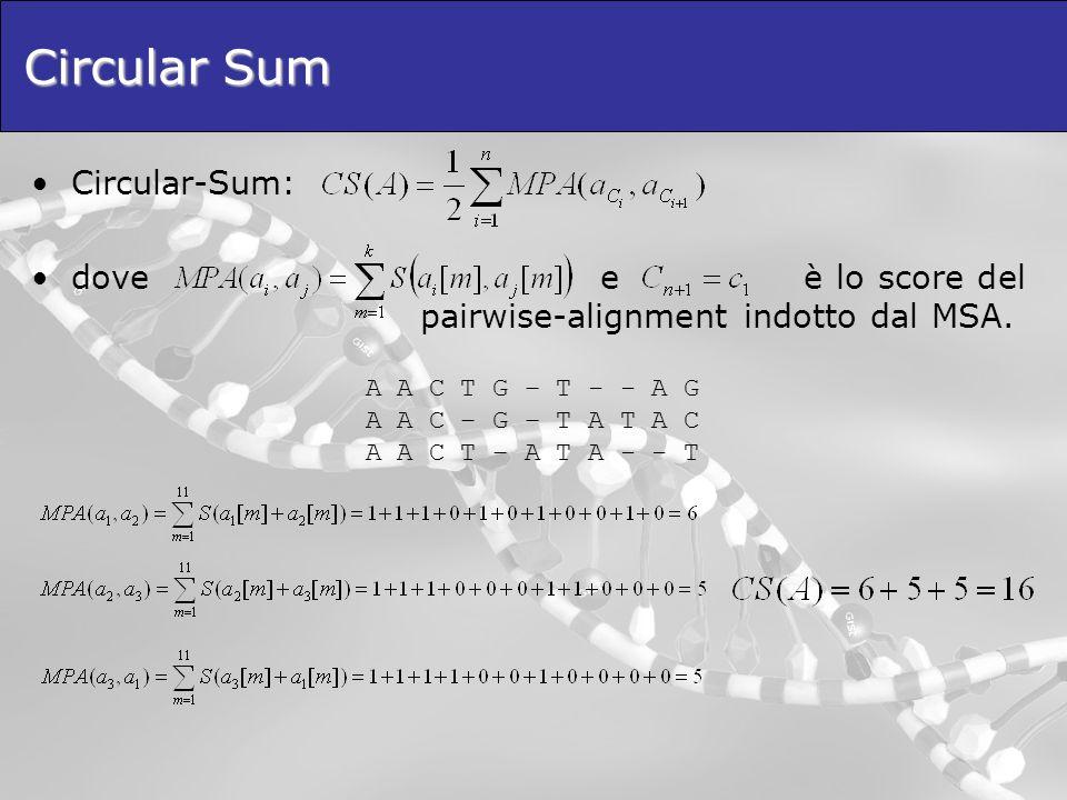 Circular Sum Circular-Sum: dove e è lo score del pairwise-alignment indotto dal MSA. A A C T G – T - - A G A A C – G – T A T A C A A C T – A T A - - T
