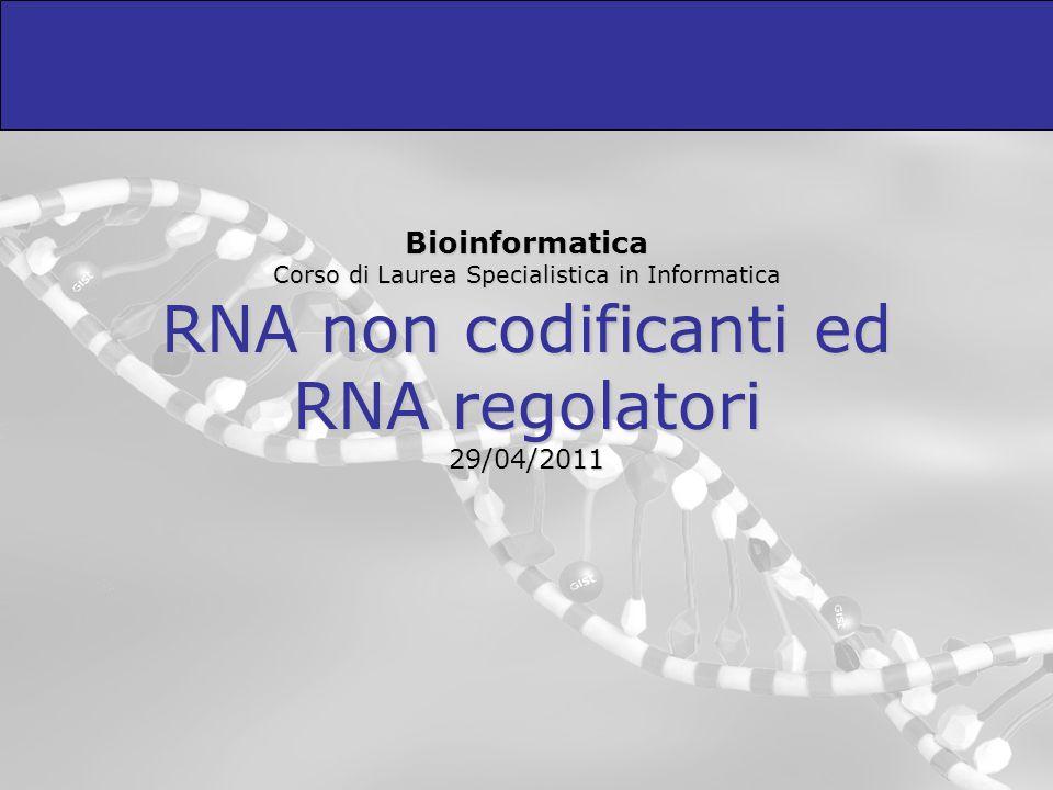 Ricerca di geni miRNA (2) Uno dei problemi principali nella ricerca di geni miRNA è la presenza di un numero elevato di potenziali hairpins nei genomi eucariotici.