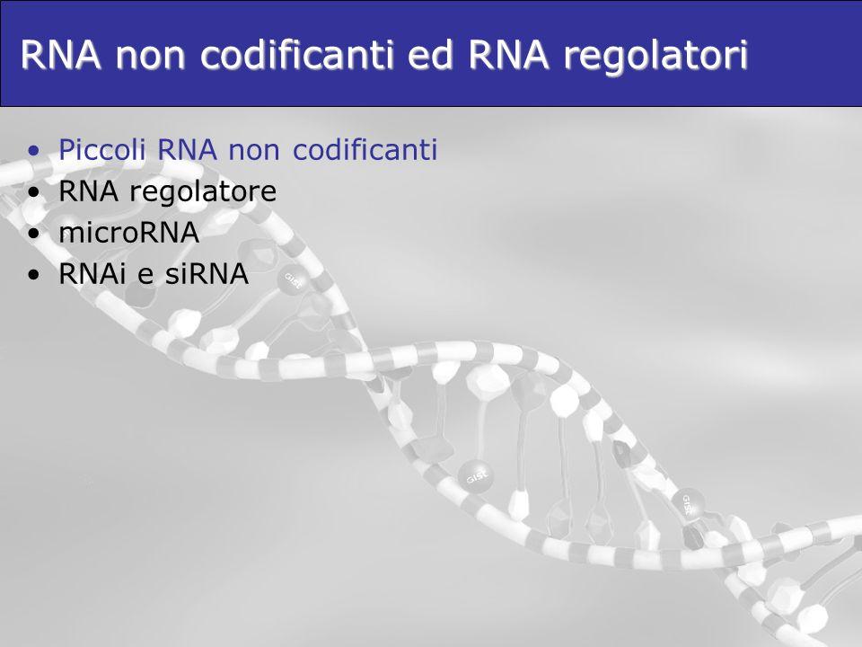 Piccoli RNA non codificanti Gli RNA non codificanti (ncRNA) giocano un ruolo fondamentale nei sistemi biologici complessi, pur non codificando alcuna proteina.