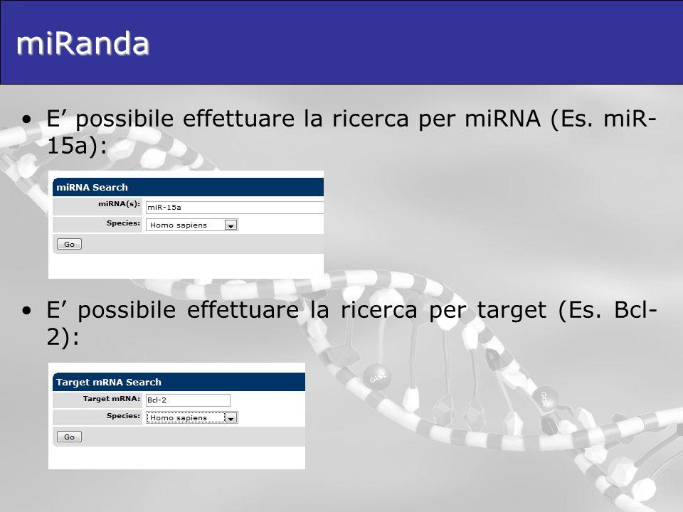 miRanda E possibile effettuare la ricerca per miRNA (Es. miR- 15a): E possibile effettuare la ricerca per target (Es. Bcl- 2):