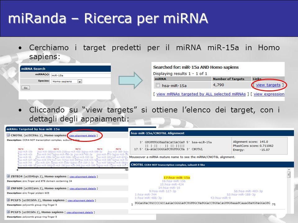 miRanda – Ricerca per miRNA Cerchiamo i target predetti per il miRNA miR-15a in Homo sapiens: Cliccando su view targets si ottiene lelenco dei target,