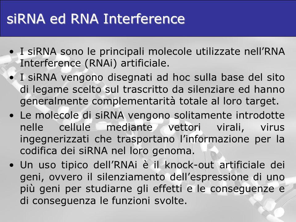 siRNA ed RNA Interference I siRNA sono le principali molecole utilizzate nellRNA Interference (RNAi) artificiale. I siRNA vengono disegnati ad hoc sul
