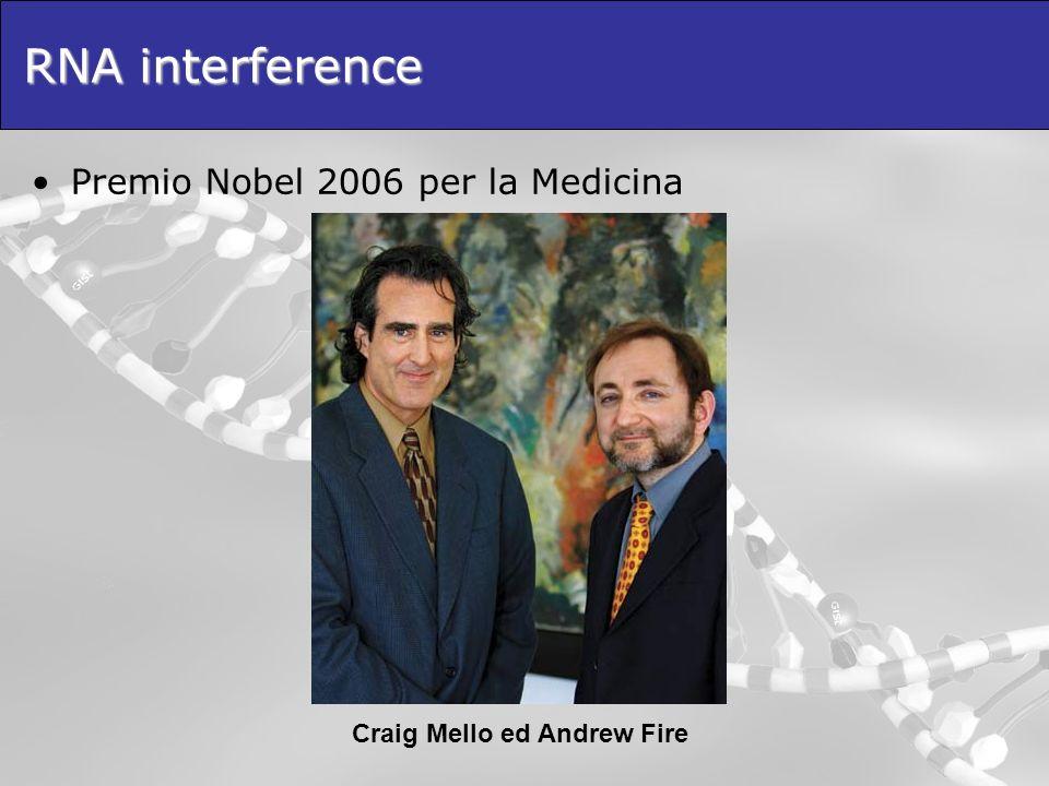 RNA interference Premio Nobel 2006 per la Medicina Craig Mello ed Andrew Fire
