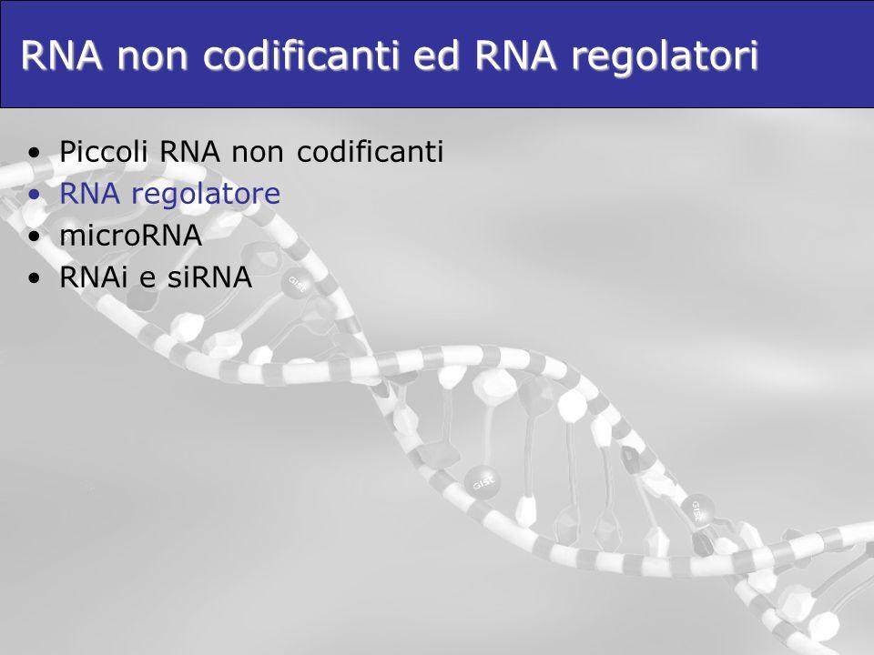 Ricerca di geni miRNA: Approcci dedicati - Metodi di Machine Learning Nei metodi di machine learning, le regole vengono estratte e verificate automaticamente a partire da esempi (pre-miRNA validati sperimentalmente).