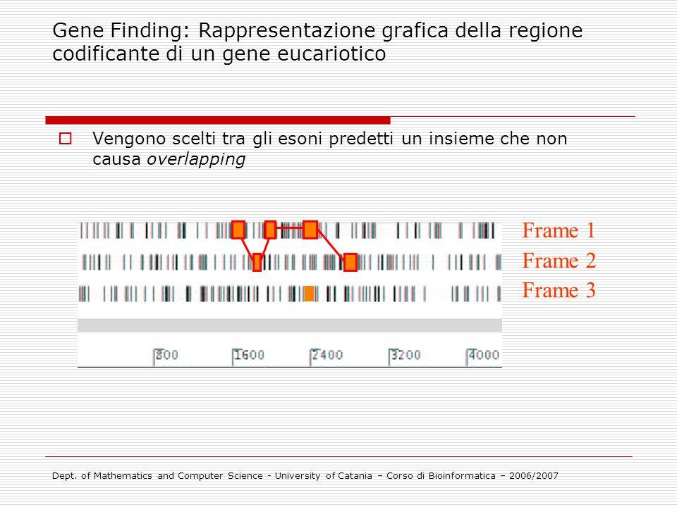 Vengono scelti tra gli esoni predetti un insieme che non causa overlapping Frame 1 Frame 2 Frame 3 Gene Finding: Rappresentazione grafica della region