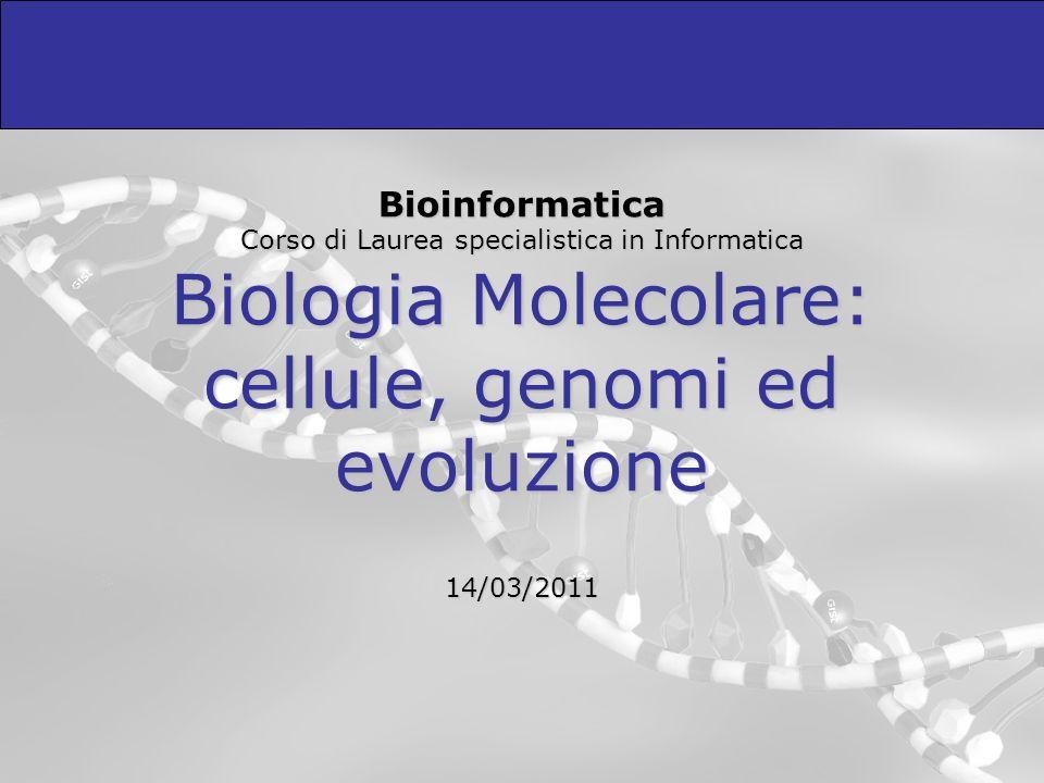 Bioinformatica Corso di Laurea specialistica in Informatica Biologia Molecolare: cellule, genomi ed evoluzione 14/03/2011