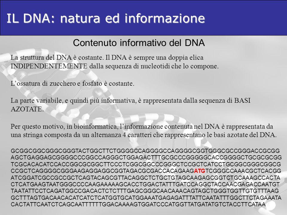 IL DNA: natura ed informazione Contenuto informativo del DNA La struttura del DNA è costante. Il DNA è sempre una doppia elica INDIPENDENTEMENTE dalla