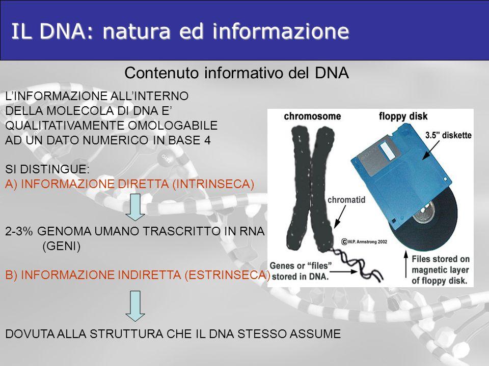 IL DNA: natura ed informazione Contenuto informativo del DNA LINFORMAZIONE ALLINTERNO DELLA MOLECOLA DI DNA E QUALITATIVAMENTE OMOLOGABILE AD UN DATO