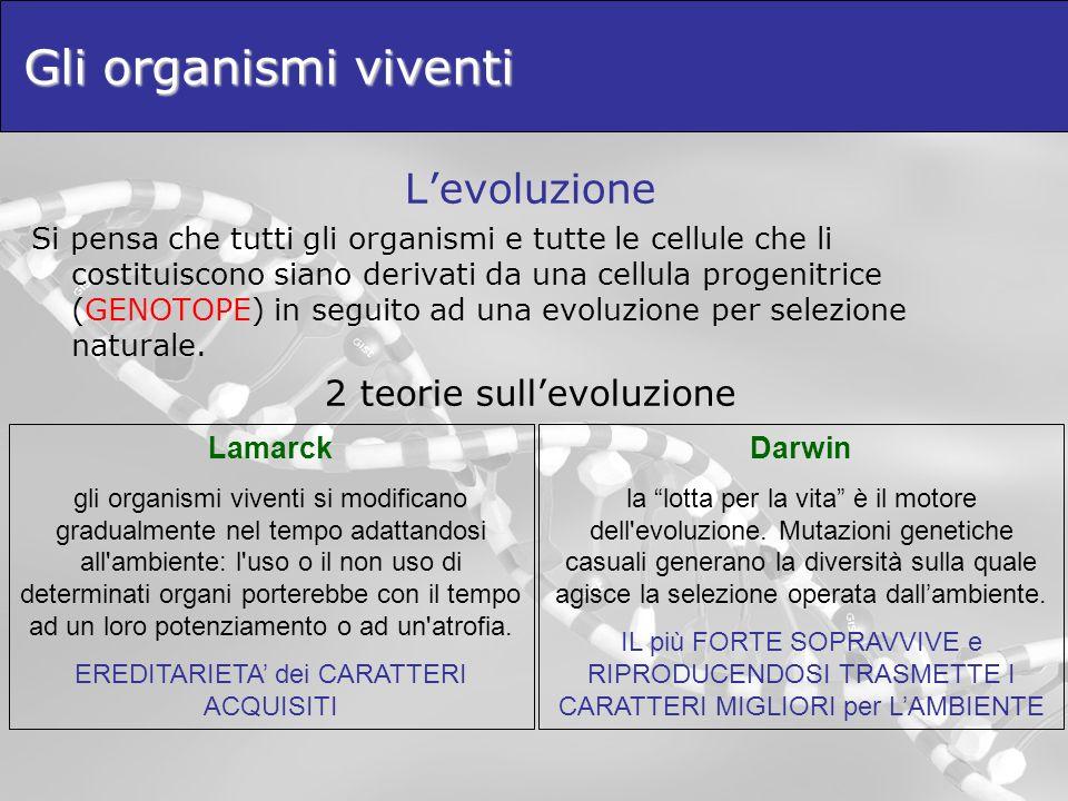 Gli organismi viventi Levoluzione Si pensa che tutti gli organismi e tutte le cellule che li costituiscono siano derivati da una cellula progenitrice
