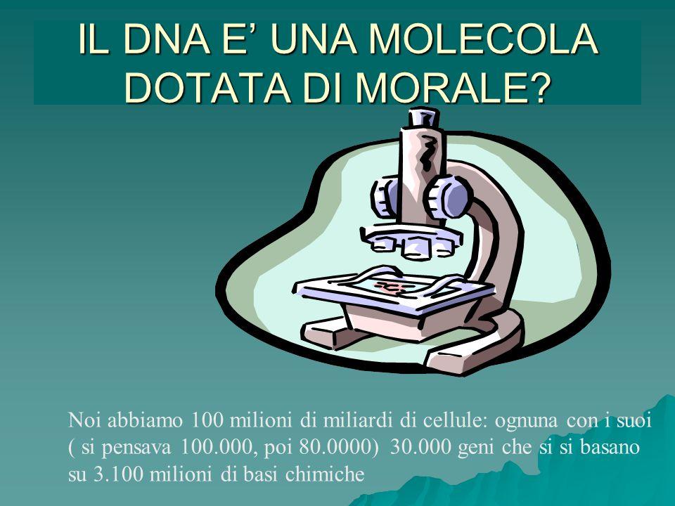 IL DNA E UNA MOLECOLA DOTATA DI MORALE? Noi abbiamo 100 milioni di miliardi di cellule: ognuna con i suoi ( si pensava 100.000, poi 80.0000) 30.000 ge